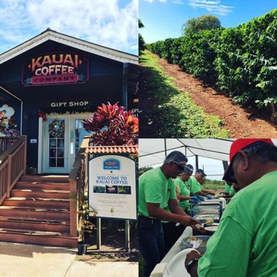 Mahalo to @kauaicoffeeco for an awesome Pau Harvest festival! Thank you for including us – we ❤️working with you guys! #specialtycoffee #endofharvest #kauaicoffee #drinklocal #greatbrandsgreatpackage